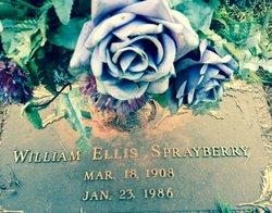 William Ellis Sprayberry