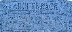 Elizabeth <i>Shenk</i> Auchenbach