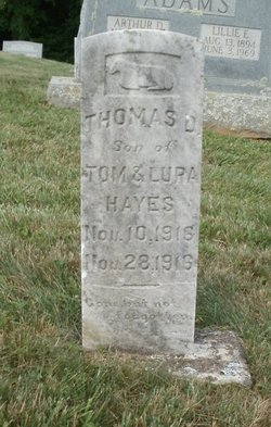 Thomas D. Hayes