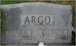 Eliene Viola <i>Blue</i> Argo