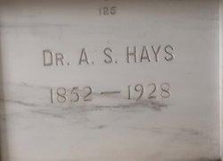 Dr Andrew S Hays