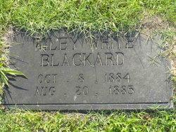 Wiley White Blackard