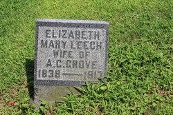 Elizabeth Mary <i>Leech</i> Grove