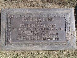 Patrinia <i>Lane</i> Adams