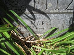 Mary Fitzgerald