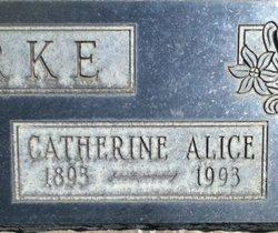 Catherine Alice <i>Remick</i> Burke