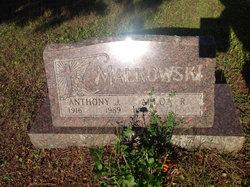 Anthony J Malkowski
