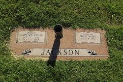 Rev James Willard Jackson, Jr