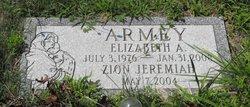 Zion Jeremiah Armey