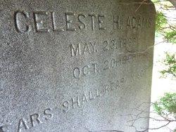 Celeste M. <i>Hein</i> Adams