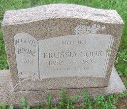 Prussia Cook