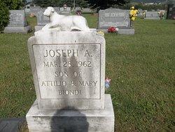 Joseph Attilio Biondi