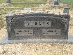 Abner Edward Burkes