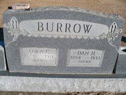 Lula Cumi <i>Knight</i> Burrow