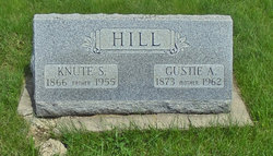 Gustie Ann <i>Nelson</i> Hill