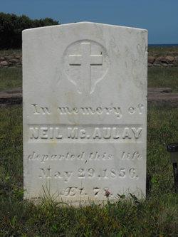 Neil McAulay