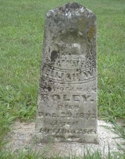 Elijah W Foley