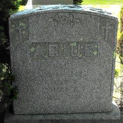Mary V Agius