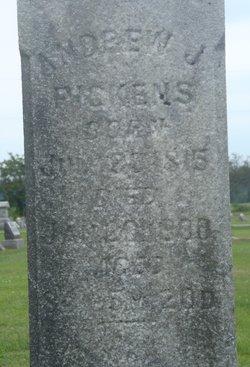 Andrew Jackson Pickens