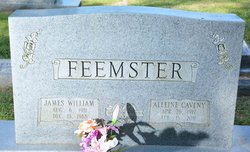 Susan Alleine <i>Caveny</i> Feemster