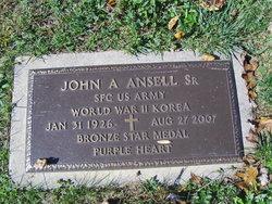 John Ansell