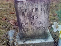 William N Gray