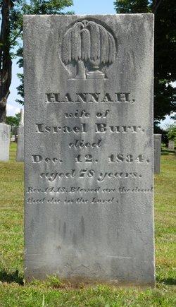 Hannah <i>Ames</i> Burr