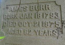Ames Burr