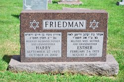 Esther <i>Langman</i> Friedman