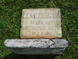 Catharine <i>Wilt</i> Allton