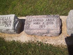 Harold Abels