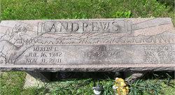 Merlin L Andrews