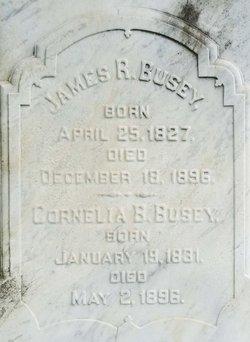 Cornelia <i>Smith</i> Busey