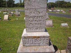 Rosa Kathleen <i>Holdheide</i> Woeste