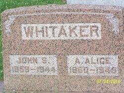 Amanda Alice <i>Voshell</i> Whitaker