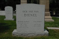 Ann <i>Harper</i> Dienel