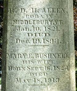Mary Elizabeth <i>Bushnell</i> Allen