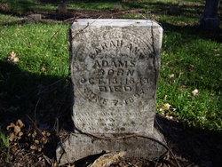 Sarah Ann Adams