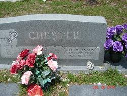 Nellie Irene <i>Evans</i> Chester