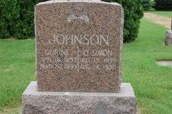 O Simon Johnson