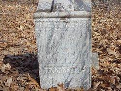 T C Adams, Jr