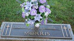 Rev Thomas Elmer Morris