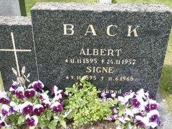 Albert Johansson Back