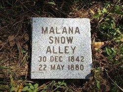 Malana A <i>Snow</i> Alley