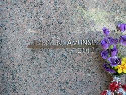 James N Amunsis