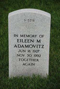 Eileen M Adamovitz