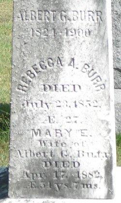 Albert Green Burr