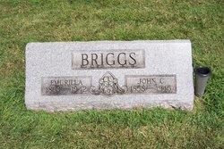 Emurilla <i>DeBow</i> Briggs
