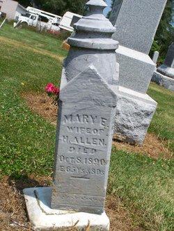 Mary E Allen