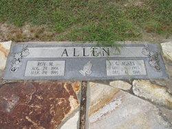 Golda Agnes <i>Woolard</i> Allen